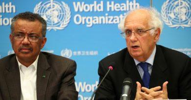 WHO calls for science and solidarity over coronavirus   China News
