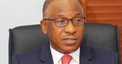 BPE to raise N266.8bn privatisation proceeds to fund 2020 budget