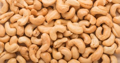 Nigeria Can Generate N71bn From Cashew Export Yearly — Economic Confidential