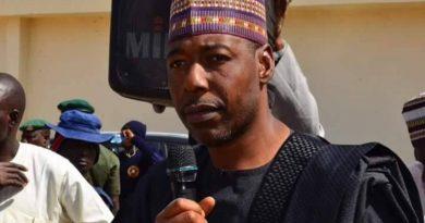 Borno: Zulum gives Igbo woman, teacher of 31 years triple promotion [Video]