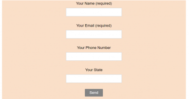 Save Entries From Contact Form 7 Into Newsletter Plugin eMail Subscribers List – OgbongeBlog