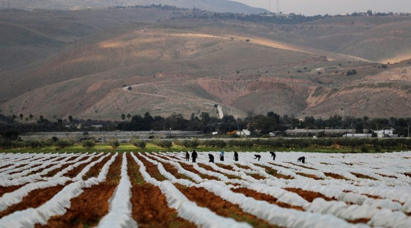 'It will be a disaster': Palestinians prepare for annexation | Palestine News