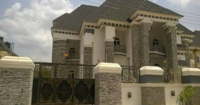 Here's What N700 Million Gets You in Nigeria Today