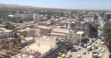 Investing in Somaliland (Part II)