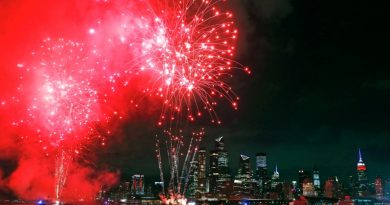 US sees larger share of private fireworks sales ahead of holiday | Coronavirus pandemic News