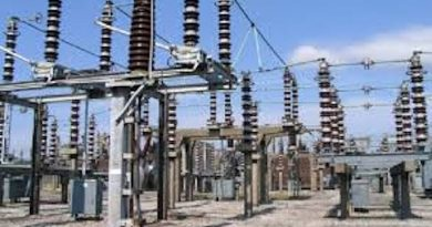 Nigerian Power Sector Reform: Where Lies the Missing Link?