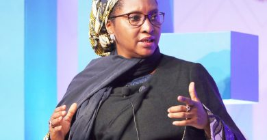 Why Nigeria Can't Stop Borrowing – Finance Minister