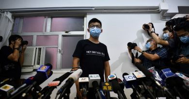 Joshua Wong vows to fight on after HK election disqualifications   News