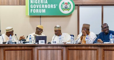 COVID-19: Governors say 29 states receive fund to strengthen public health response – NGF