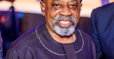 Ngige urges Anambra govt to banish 12 suspended monarchs over Abuja trip