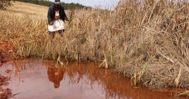Understanding The Benefits Of Local Wetland Encourages Eswatini Community To Save It