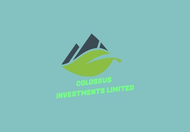 Facility Manager at Colossus Investment Limited