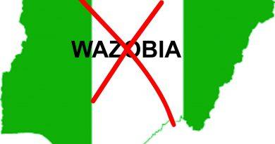 Frederick Nwabufo: 'Turn-by-turn presidency' - Igbo, Hausa, Yoruba don't own Nigeria