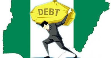 Spending Earnings for Debt Servicing — Economic Confidential