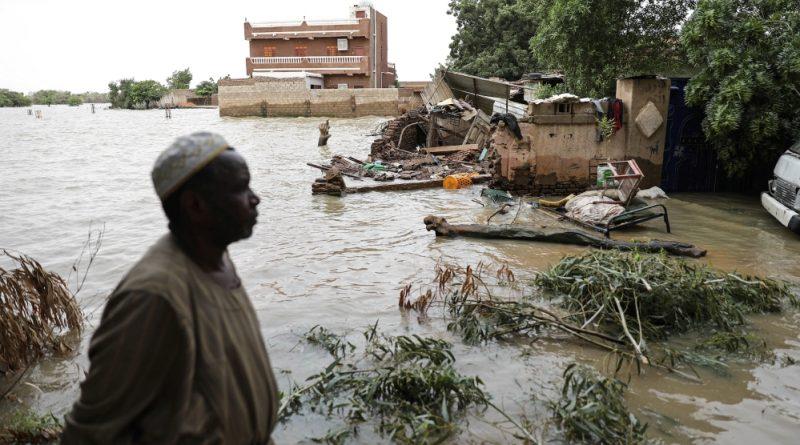 Go green or go home: Sudan's climate opportunity | Sudan