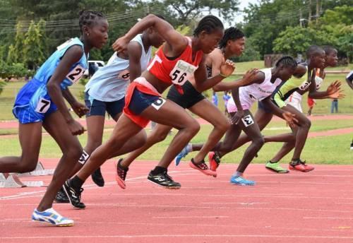 Resetting The Button Of Sports Development In Nigeria -Odegbami