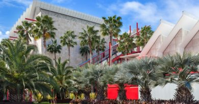 LACMA Board Tom Gores Resigns Over Social Justice Outcry – WWD